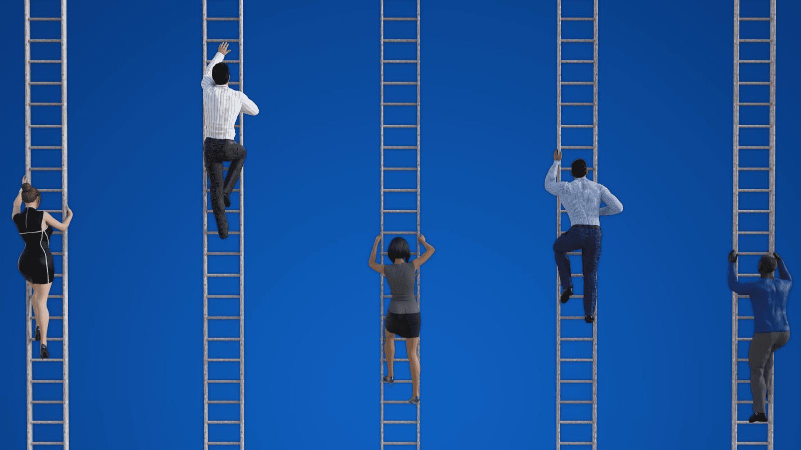 portfolio career ladder