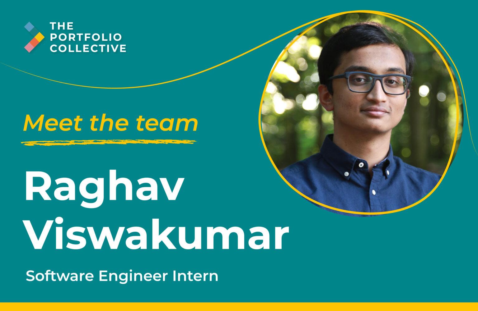 Meet-the-team-Raghav